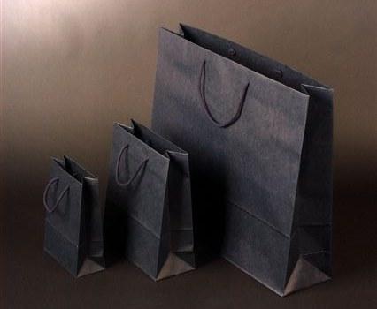 Papírová taška o rozměru 160 x 80 x 240 mm,modrý tisk na sulfát.papíru, bavlněné držadlo