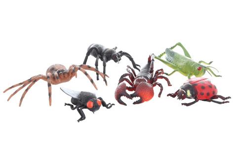Hmyz velký